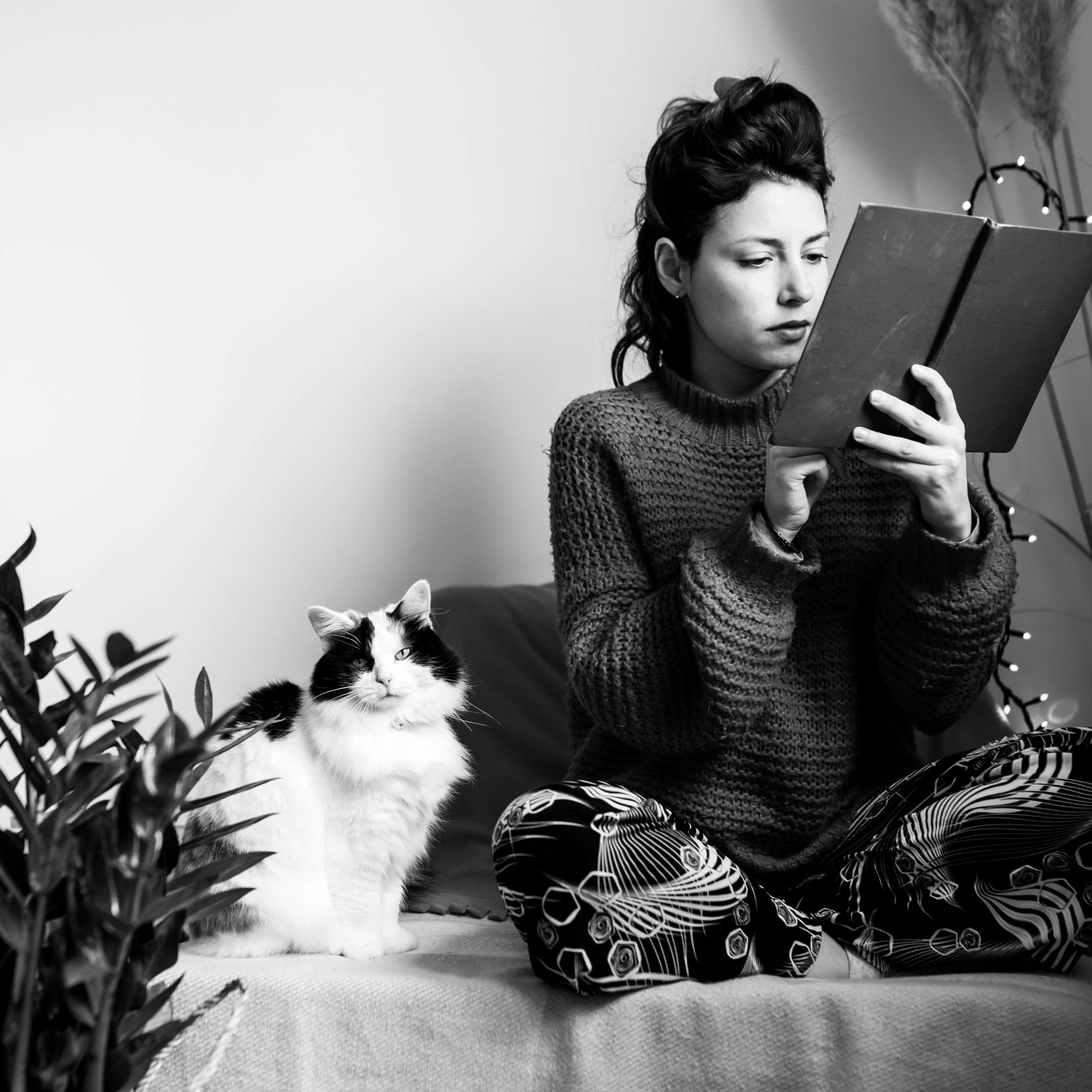 DLegal Law Office - Lady with cat